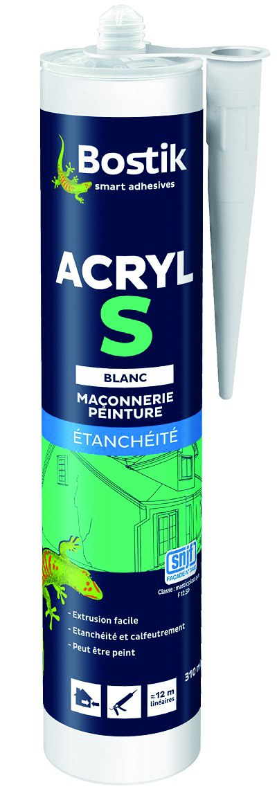 Mastic acrylique s-