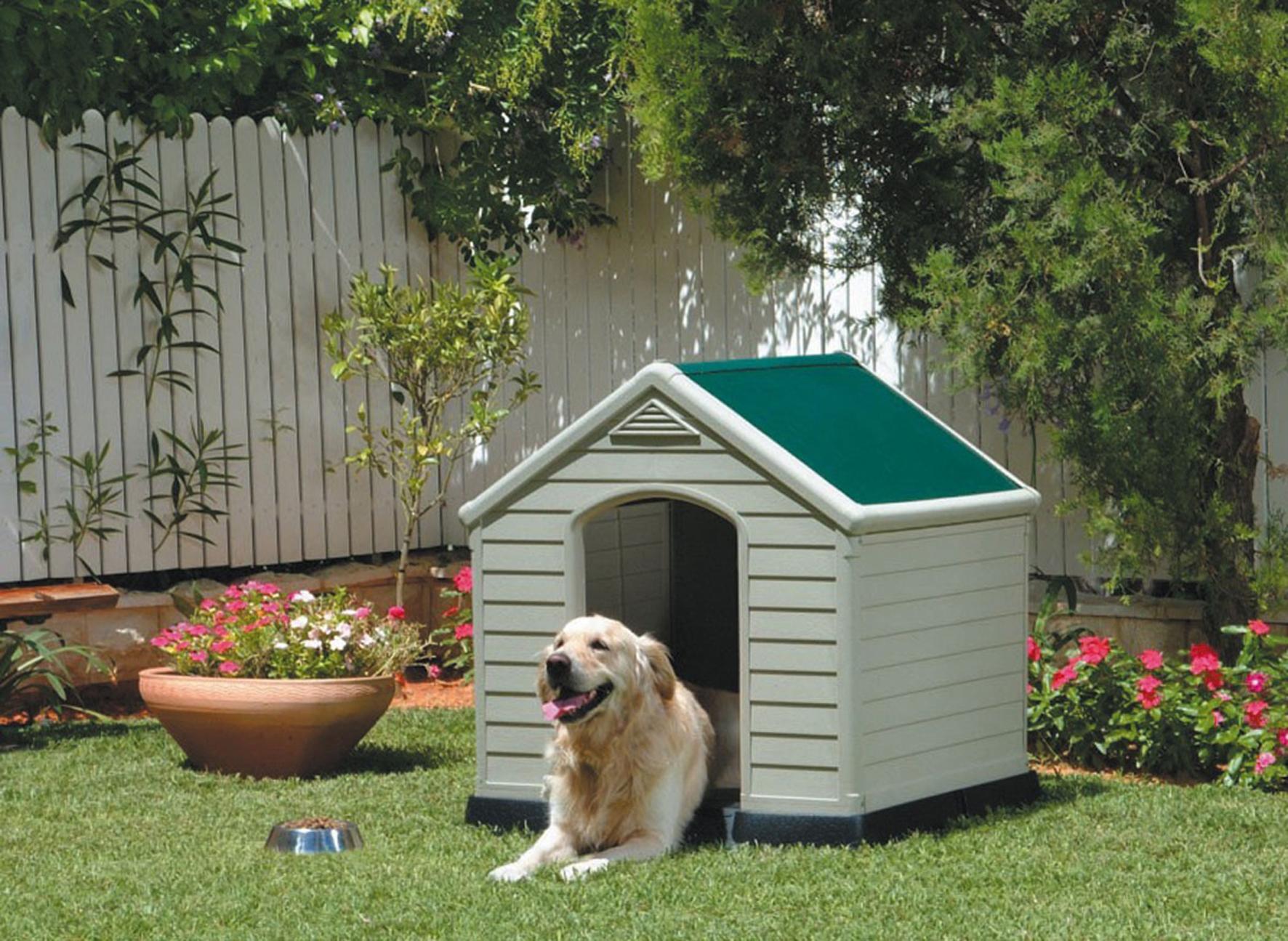 Niche pour chiens-